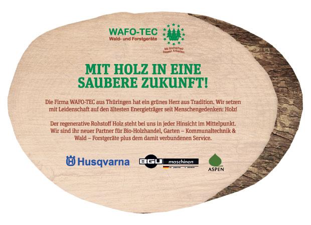 Mit Holz in eine saubere Zukunft!